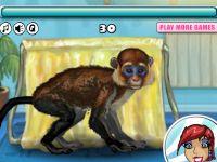 Witziger Affe